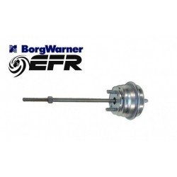 EFR High Boost WG